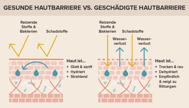Gesunde hautbarriere vs. geschädigte hautbarriere